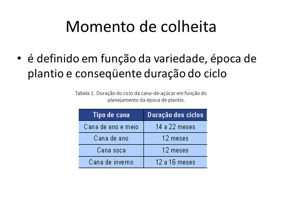Momento de colheita é definido em função da variedade, época de plantio e conseqüente duração do ciclo.