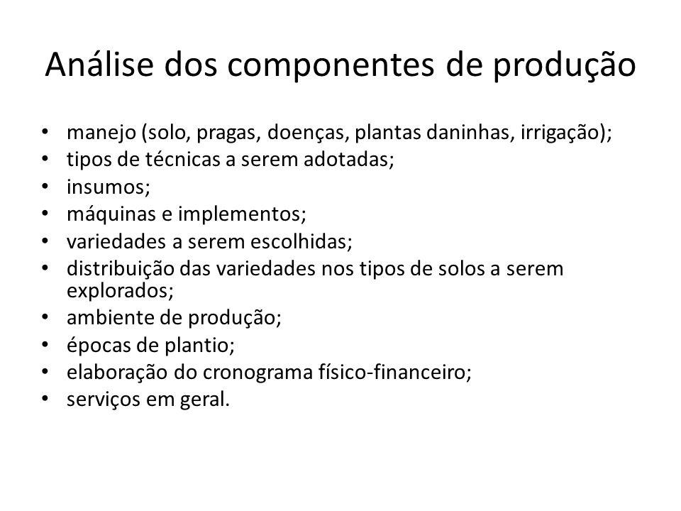 Análise dos componentes de produção