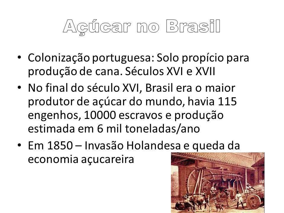 Açúcar no BrasilColonização portuguesa: Solo propício para produção de cana. Séculos XVI e XVII.