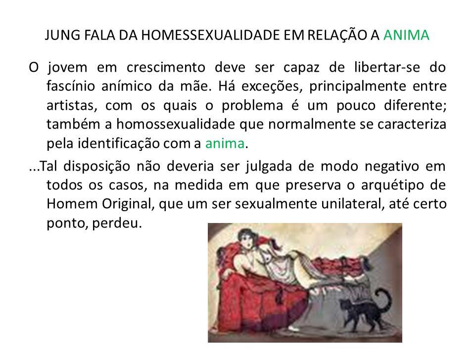 JUNG FALA DA HOMESSEXUALIDADE EM RELAÇÃO A ANIMA