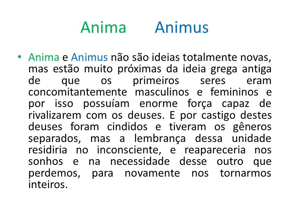 Anima Animus