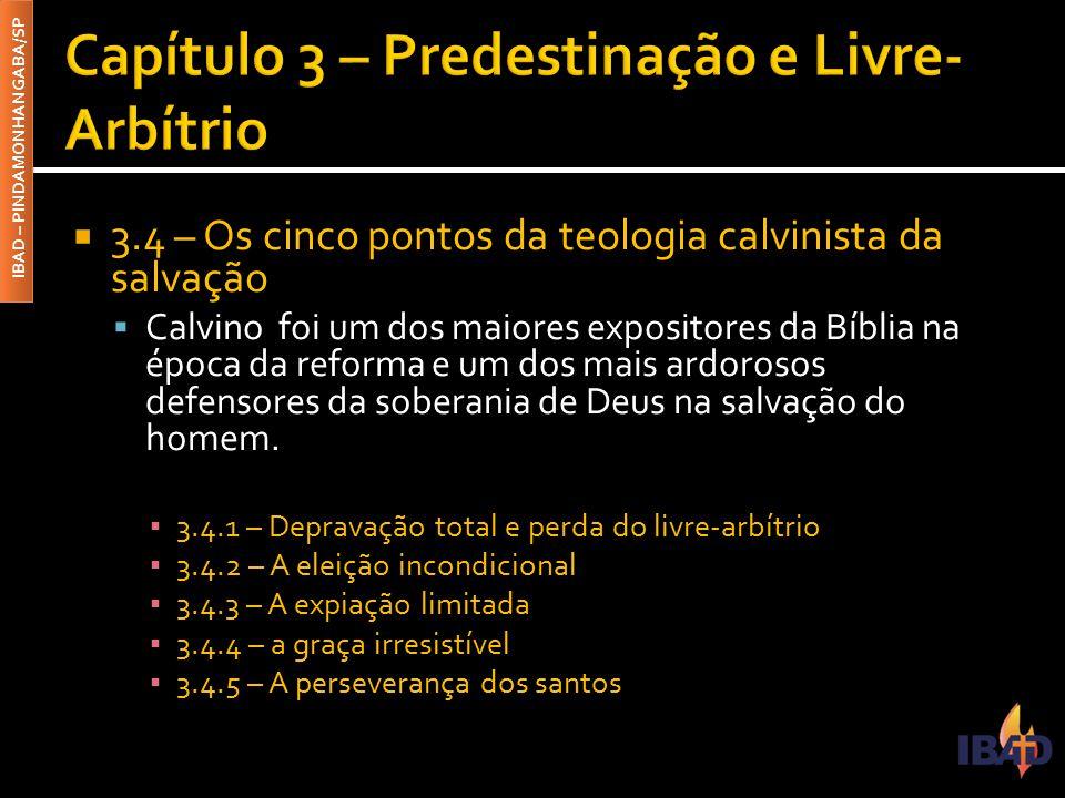 Capítulo 3 – Predestinação e Livre-Arbítrio