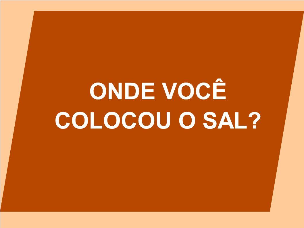 ONDE VOCÊ COLOCOU O SAL