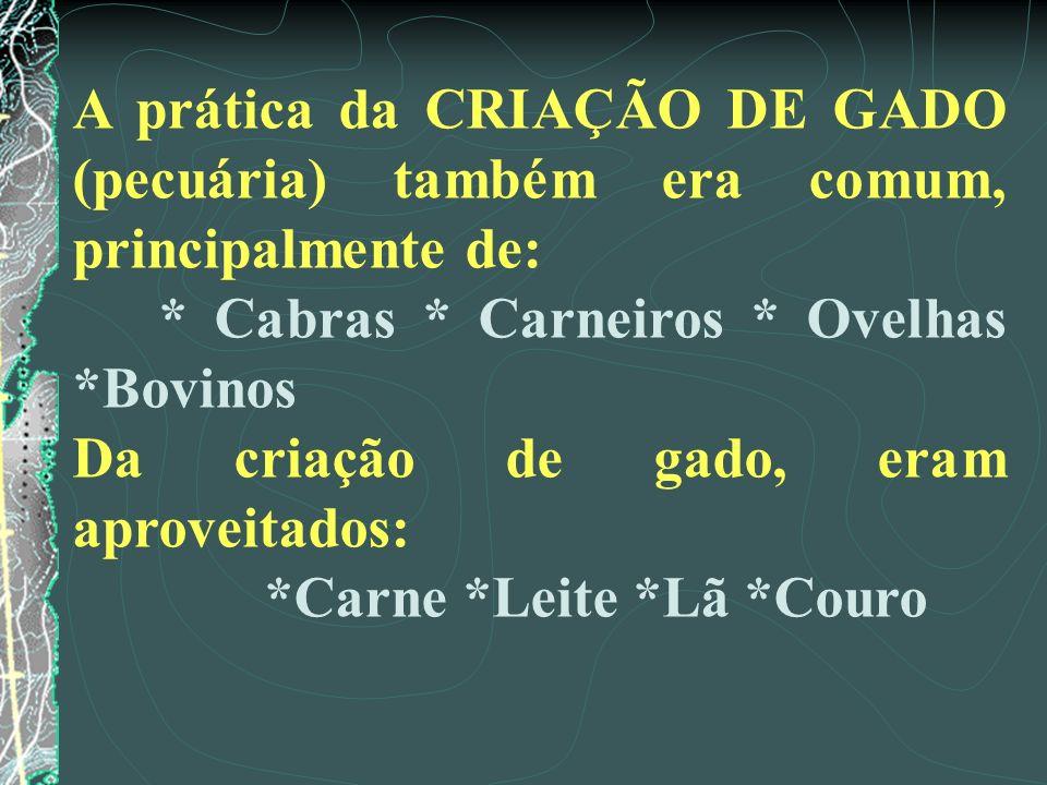 A prática da CRIAÇÃO DE GADO (pecuária) também era comum, principalmente de:
