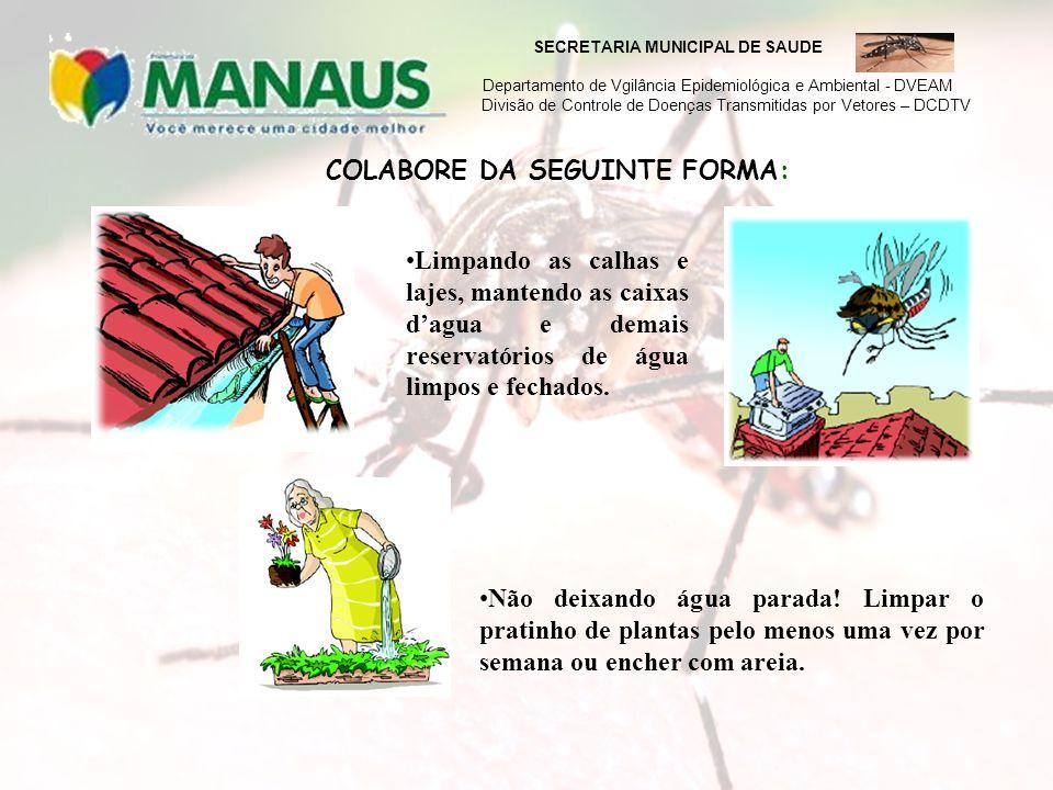 COLABORE DA SEGUINTE FORMA: