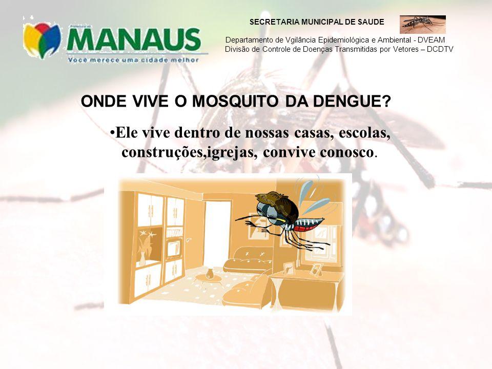 ONDE VIVE O MOSQUITO DA DENGUE