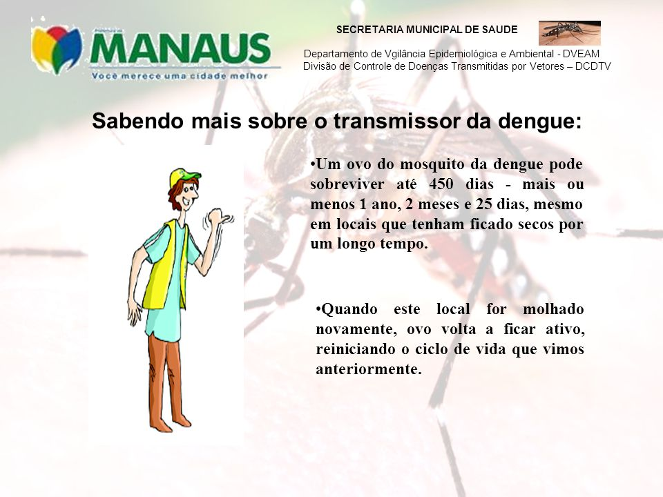 Sabendo mais sobre o transmissor da dengue: