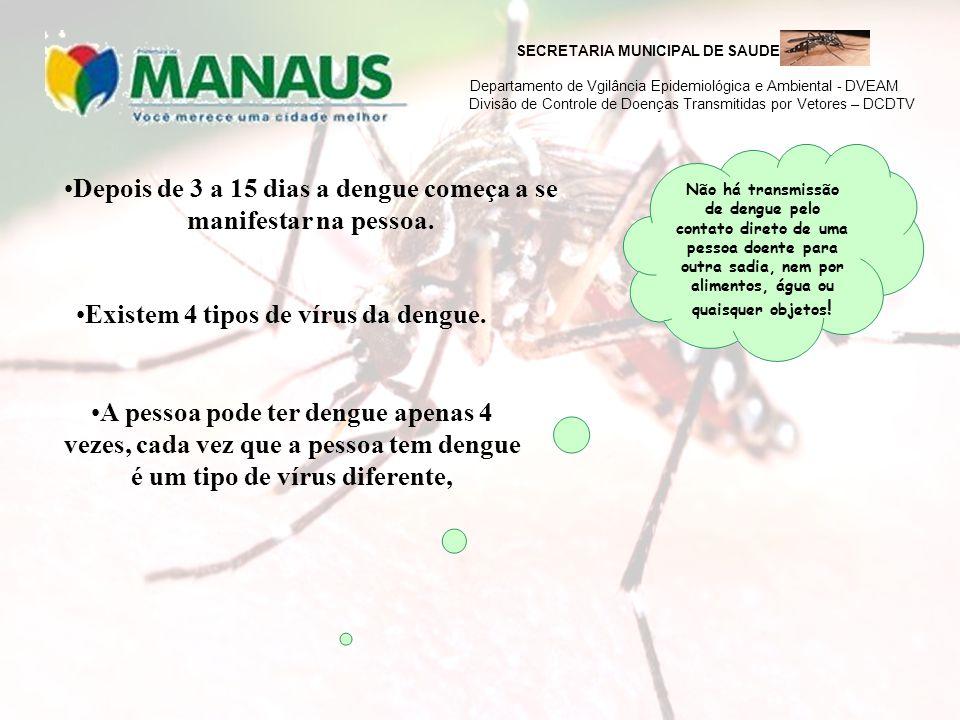 Depois de 3 a 15 dias a dengue começa a se manifestar na pessoa.