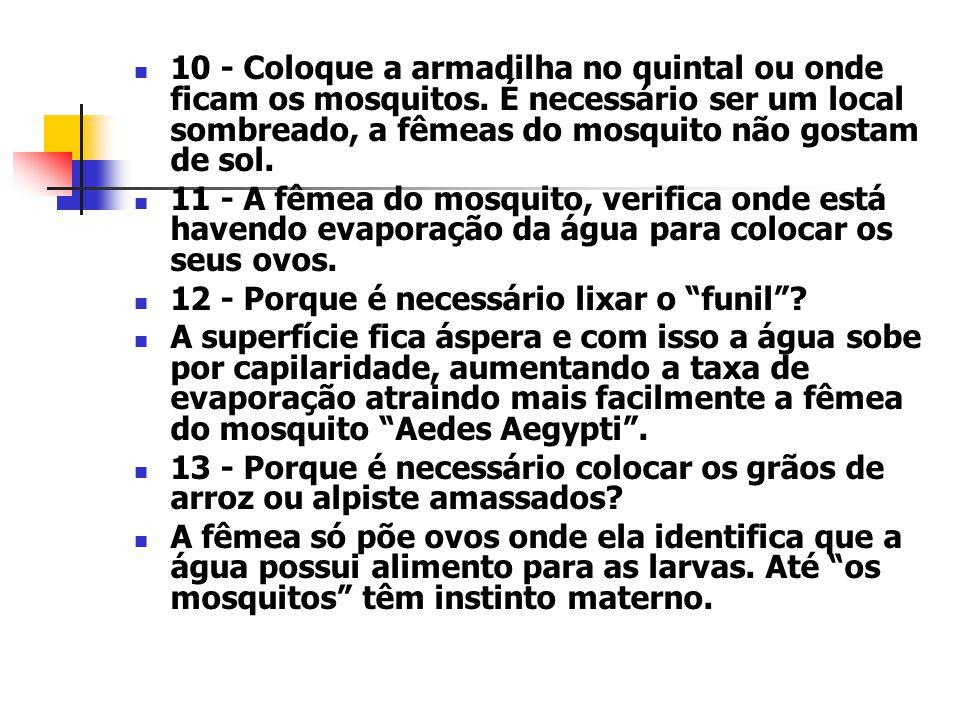 10 - Coloque a armadilha no quintal ou onde ficam os mosquitos