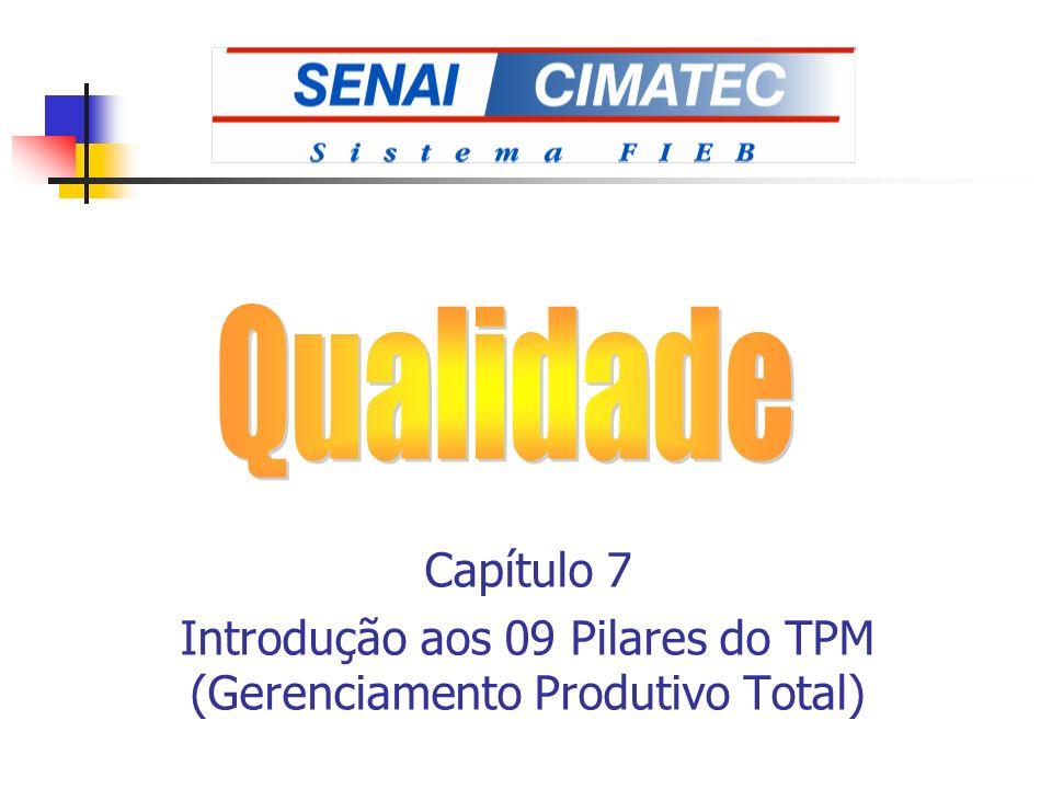 Introdução aos 09 Pilares do TPM (Gerenciamento Produtivo Total)