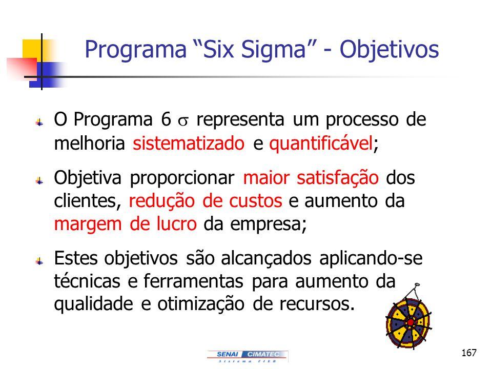 Programa Six Sigma - Objetivos