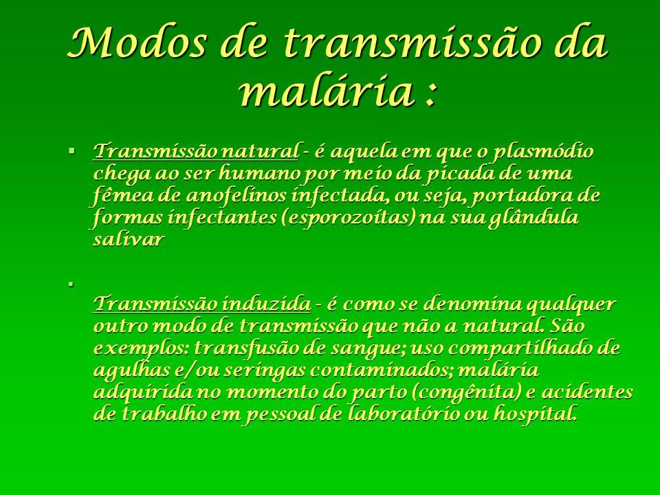 Modos de transmissão da malária :