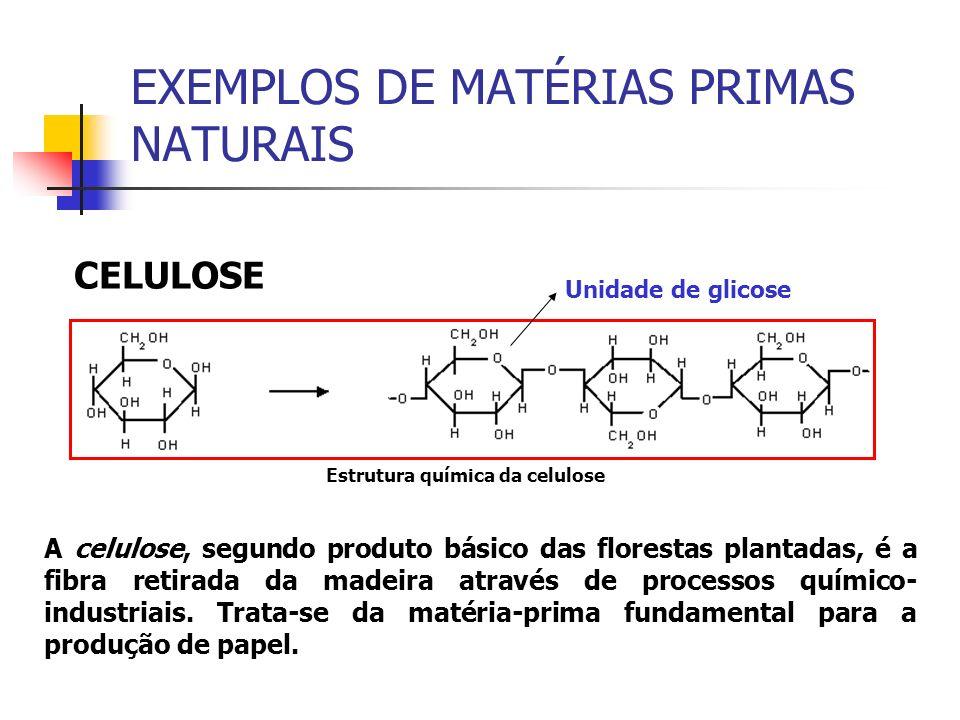 EXEMPLOS DE MATÉRIAS PRIMAS NATURAIS