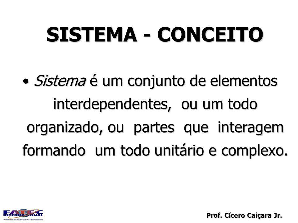 SISTEMA - CONCEITO