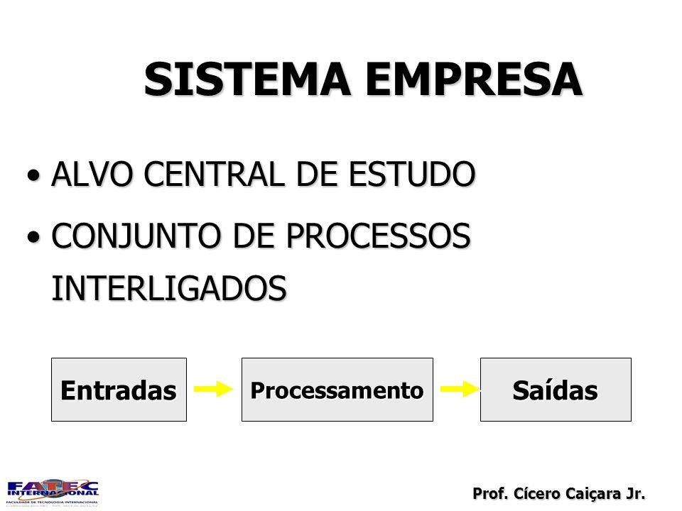 SISTEMA EMPRESA ALVO CENTRAL DE ESTUDO
