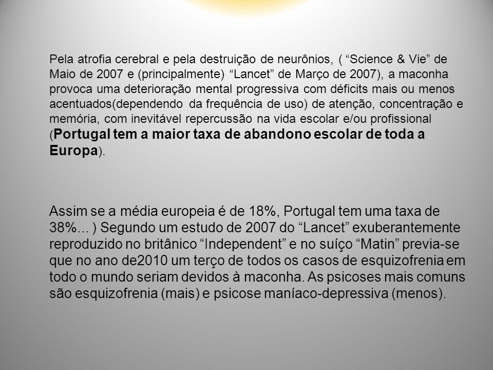 Pela atrofia cerebral e pela destruição de neurônios, ( Science & Vie de Maio de 2007 e (principalmente) Lancet de Março de 2007), a maconha provoca uma deterioração mental progressiva com déficits mais ou menos acentuados(dependendo da frequência de uso) de atenção, concentração e memória, com inevitável repercussão na vida escolar e/ou profissional (Portugal tem a maior taxa de abandono escolar de toda a Europa).