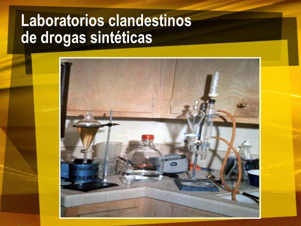 Laboratorios clandestinos