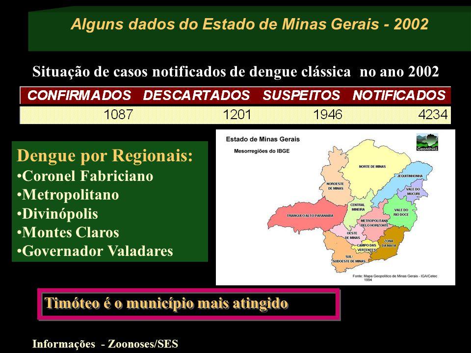 Alguns dados do Estado de Minas Gerais - 2002