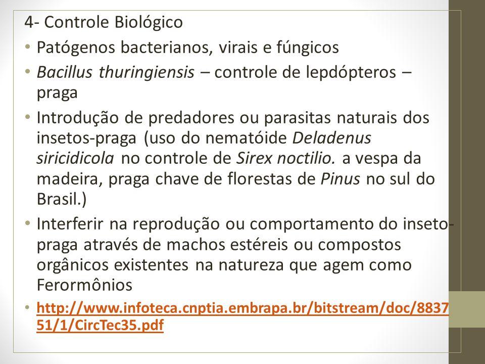 Patógenos bacterianos, virais e fúngicos