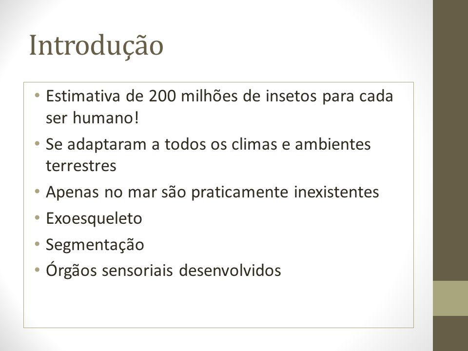 Introdução Estimativa de 200 milhões de insetos para cada ser humano!