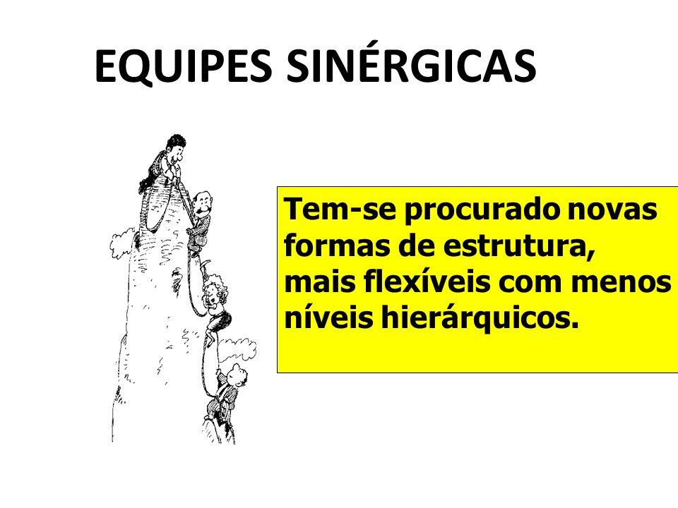 EQUIPES SINÉRGICAS Tem-se procurado novas formas de estrutura, mais flexíveis com menos níveis hierárquicos.