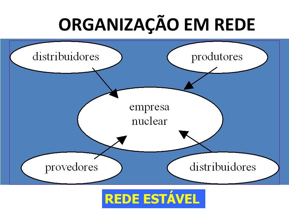 ORGANIZAÇÃO EM REDE REDE ESTÁVEL
