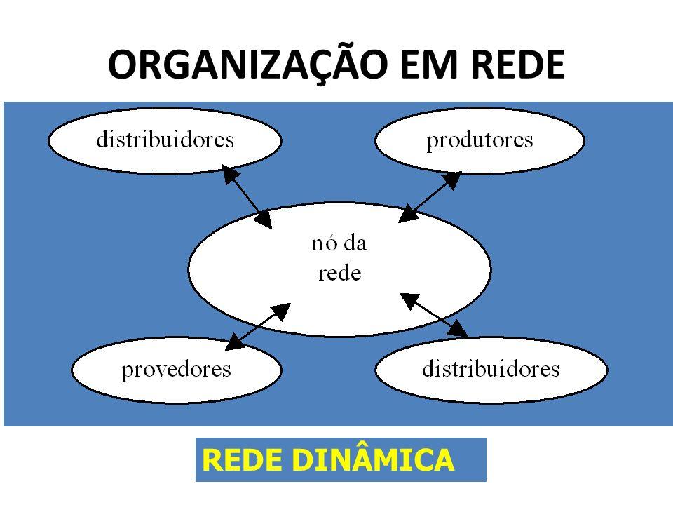 ORGANIZAÇÃO EM REDE REDE DINÂMICA