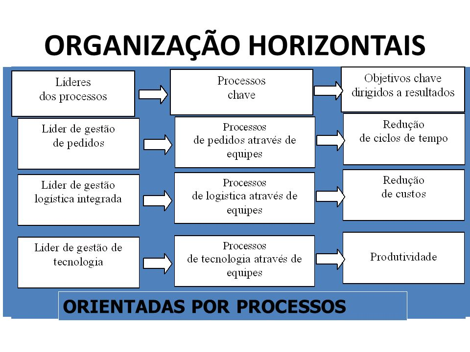 ORGANIZAÇÃO HORIZONTAIS
