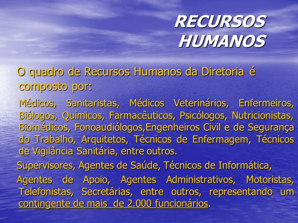 RECURSOS HUMANOS O quadro de Recursos Humanos da Diretoria é composto por: