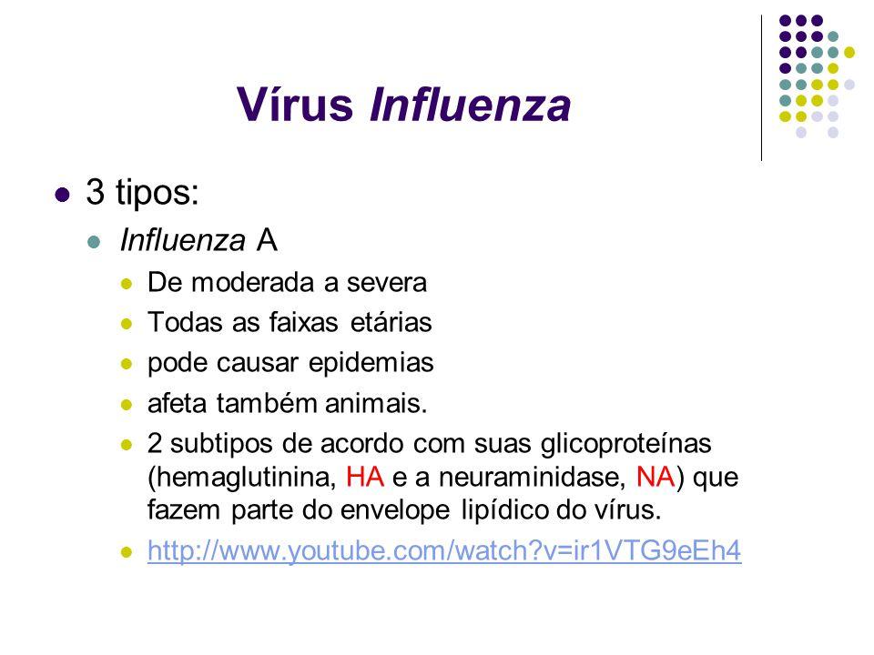 Vírus Influenza 3 tipos: Influenza A De moderada a severa