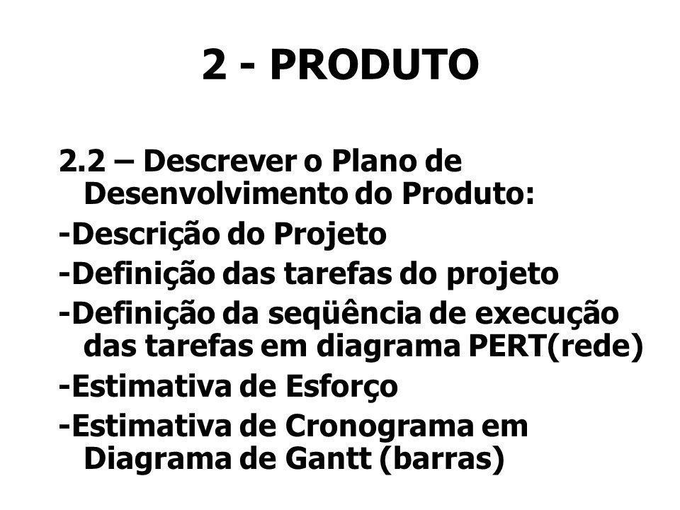2 - PRODUTO 2.2 – Descrever o Plano de Desenvolvimento do Produto:
