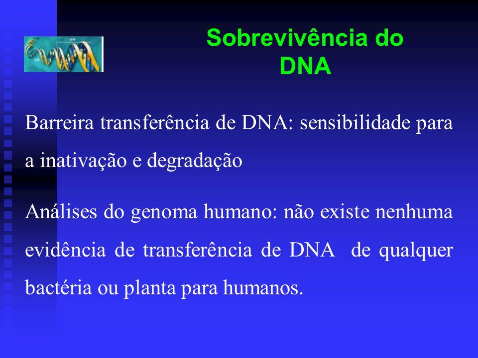 Sobrevivência do DNA Barreira transferência de DNA: sensibilidade para a inativação e degradação.