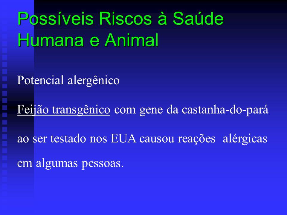 Possíveis Riscos à Saúde Humana e Animal