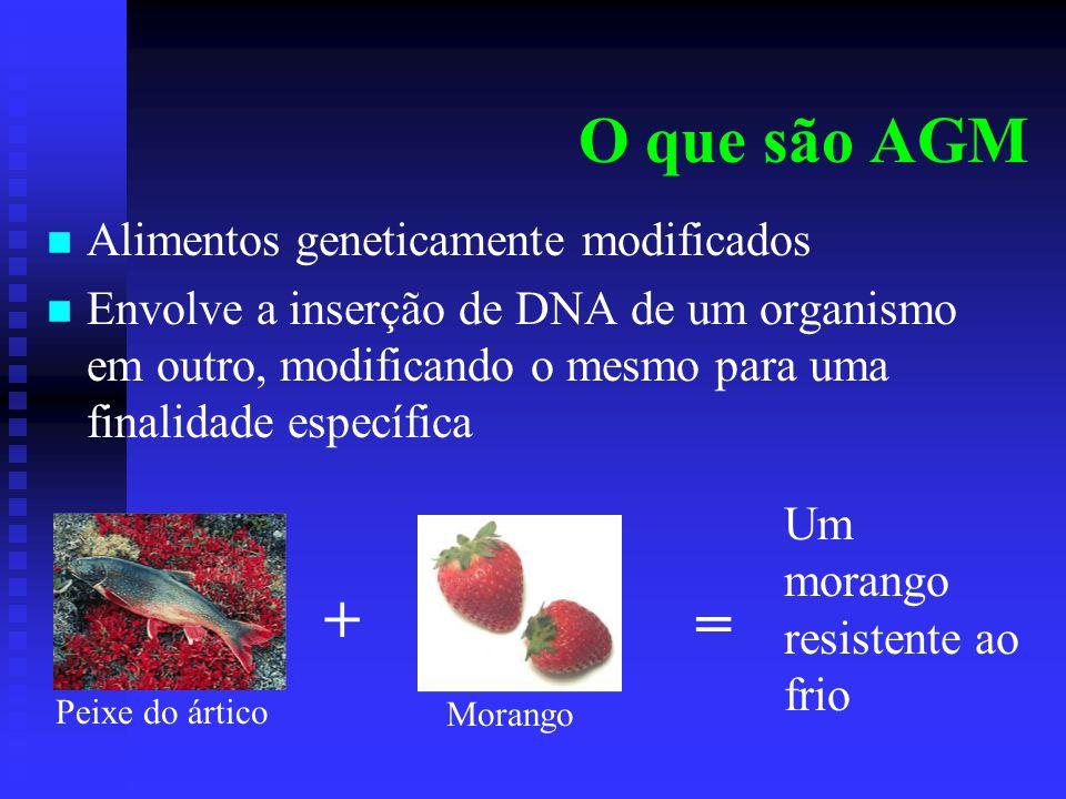 O que são AGM + = Alimentos geneticamente modificados