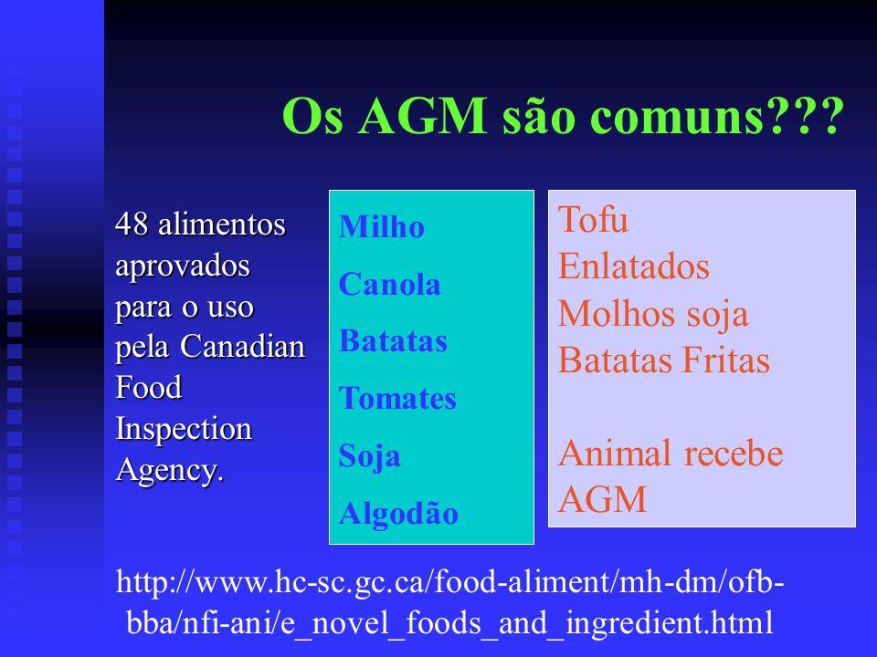 Os AGM são comuns Tofu Enlatados Molhos soja Batatas Fritas