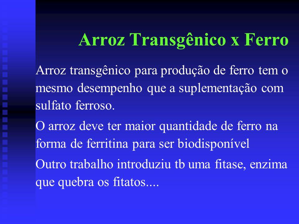 Arroz Transgênico x Ferro