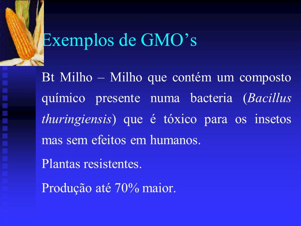 Exemplos de GMO's