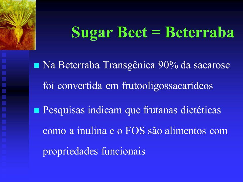 Sugar Beet = Beterraba Na Beterraba Transgênica 90% da sacarose foi convertida em frutooligossacarídeos.