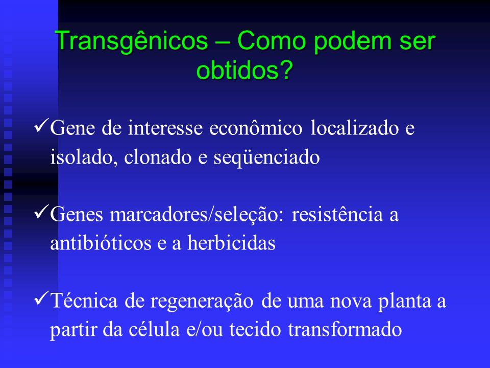 Transgênicos – Como podem ser obtidos