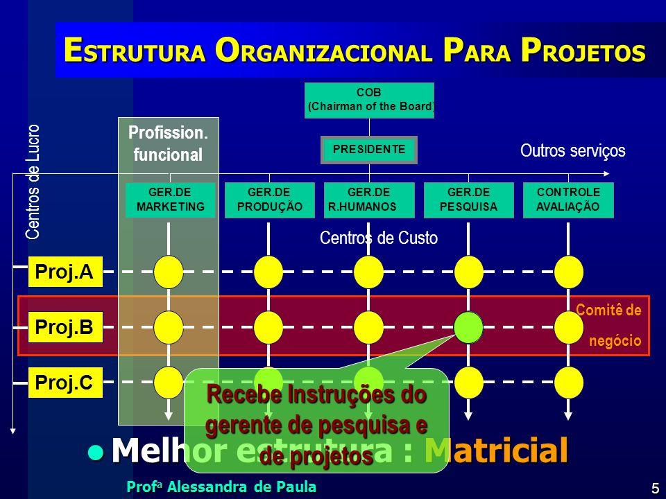 ESTRUTURA ORGANIZACIONAL PARA PROJETOS