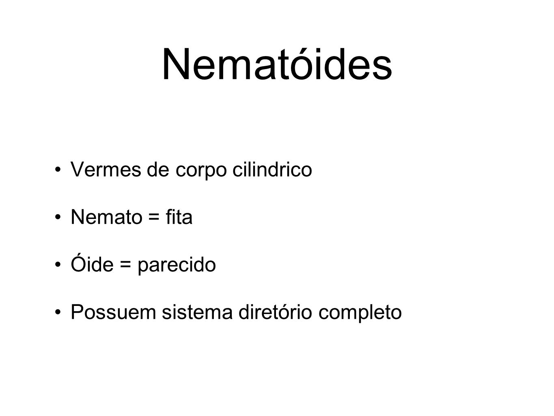 Nematóides Vermes de corpo cilindrico Nemato = fita Óide = parecido