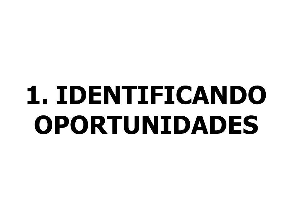 1. IDENTIFICANDO OPORTUNIDADES