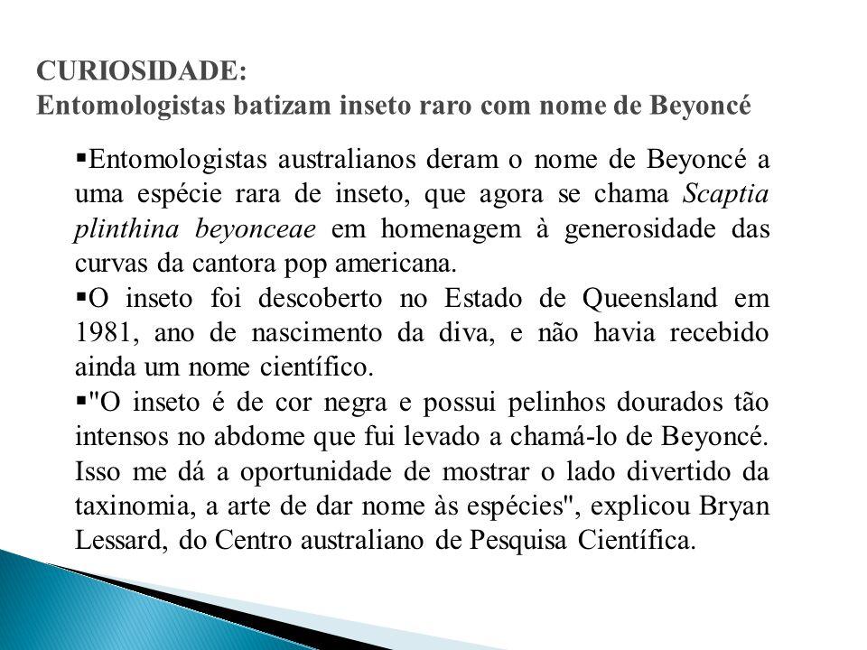CURIOSIDADE: Entomologistas batizam inseto raro com nome de Beyoncé.