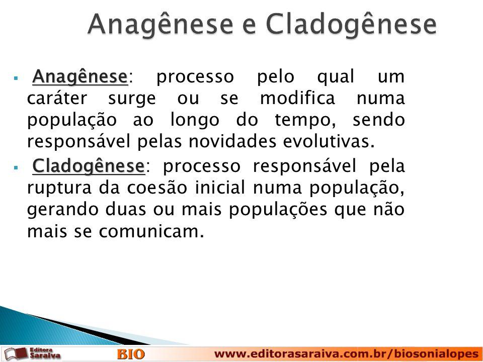 Anagênese e Cladogênese