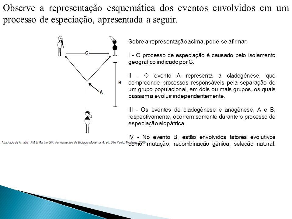 Observe a representação esquemática dos eventos envolvidos em um processo de especiação, apresentada a seguir.