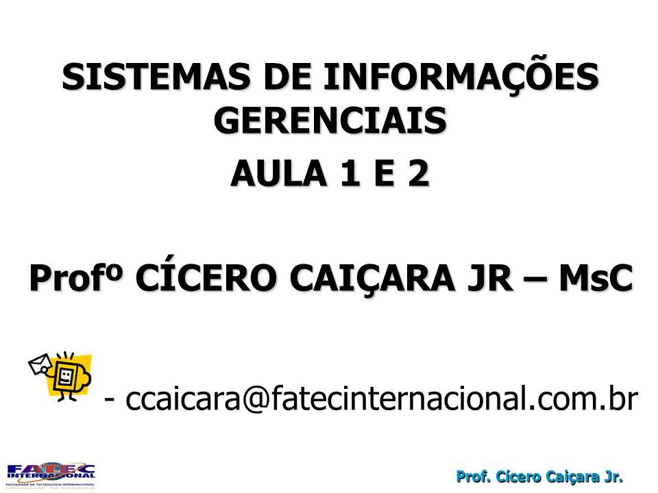 SISTEMAS DE INFORMAÇÕES GERENCIAIS Profº CÍCERO CAIÇARA JR – MsC