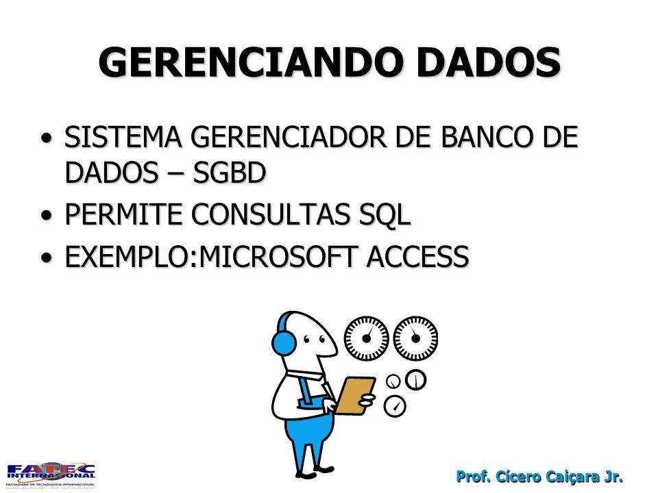 GERENCIANDO DADOS SISTEMA GERENCIADOR DE BANCO DE DADOS – SGBD