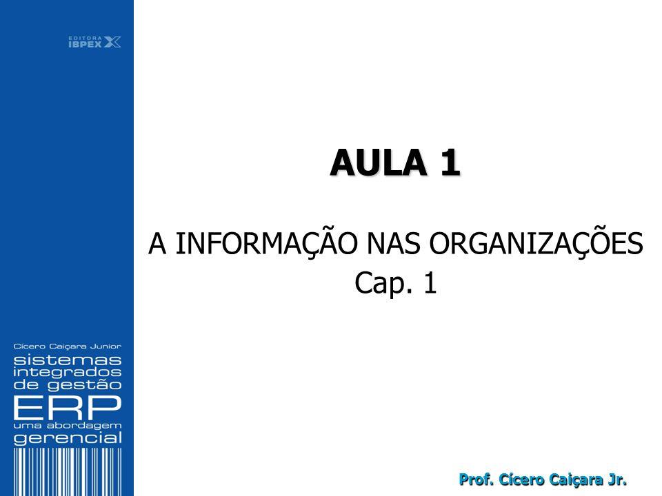 AULA 1 A INFORMAÇÃO NAS ORGANIZAÇÕES Cap. 1