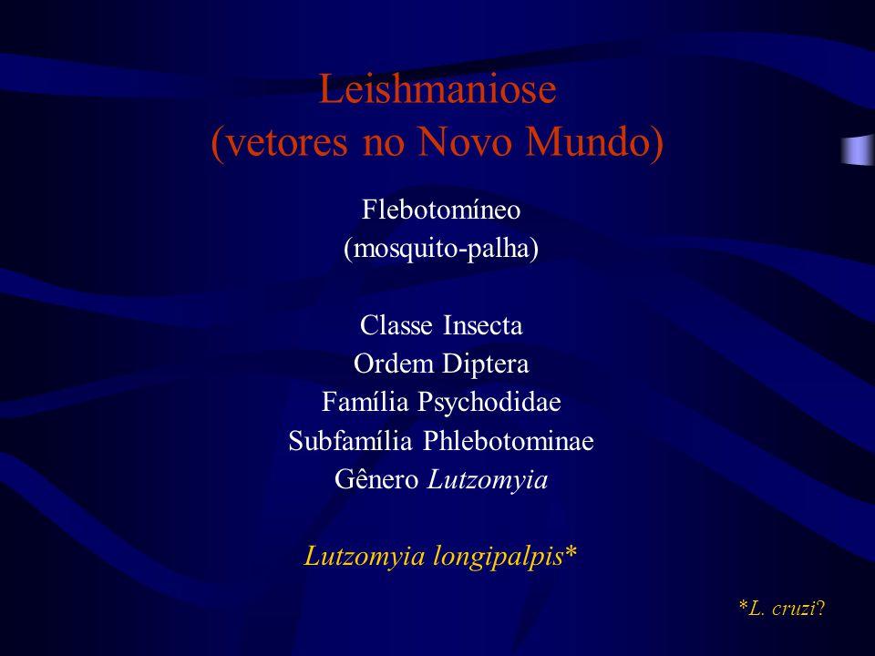 Leishmaniose (vetores no Novo Mundo)