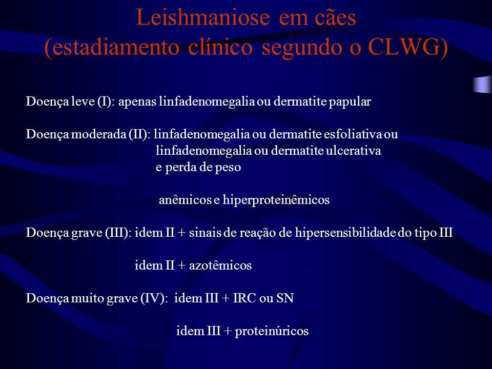 Leishmaniose em cães (estadiamento clínico segundo o CLWG)